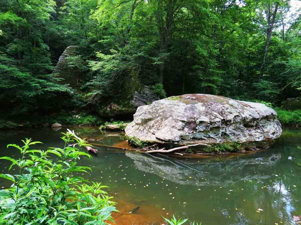Bell Smith Springs 4