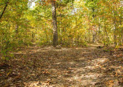 hiking-path-bell-mountain-missouri