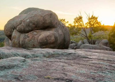 Pig-face-elephant-rocks-missouri-picture-gallery