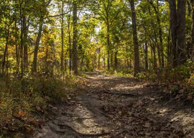 hughes-mountain-trail-missouri-picture-gallery